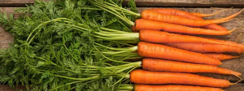 6 Receitas com folha de cenoura para emagrecer