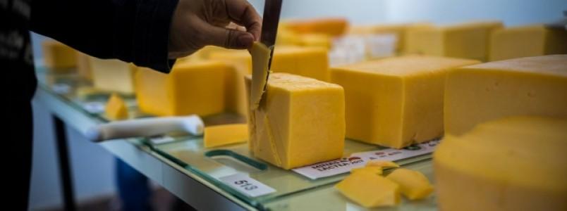 Pesquisa mineira sobre benefícios do queijo prato ganha prêmio nacional