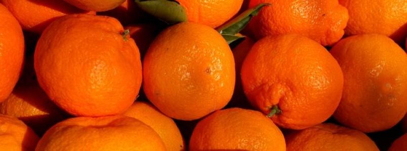 Bergamota, mexerica ou tangerina - veja receitas com a fruta