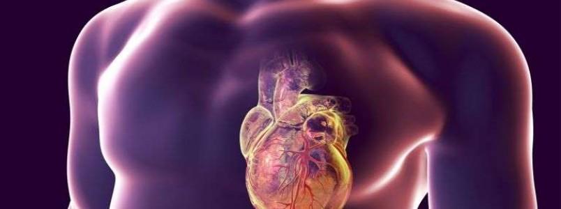O que fazer quando alguém está tendo um infarto? 8 passos de primeiros socorros salvam vidas