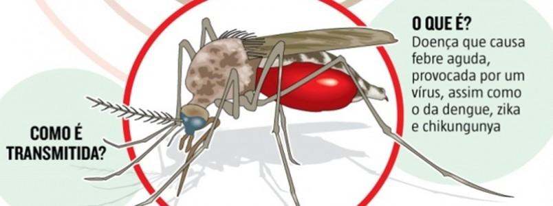 Febre do Nilo Ocidental, doença que pode matar, deixa Minas em alerta