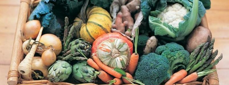 Como conservar melhor frutas, legumes e verduras no verão?