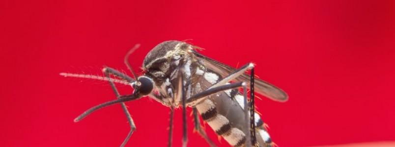Não é só coronavírus: 5 doenças infecciosas que merecem atenção
