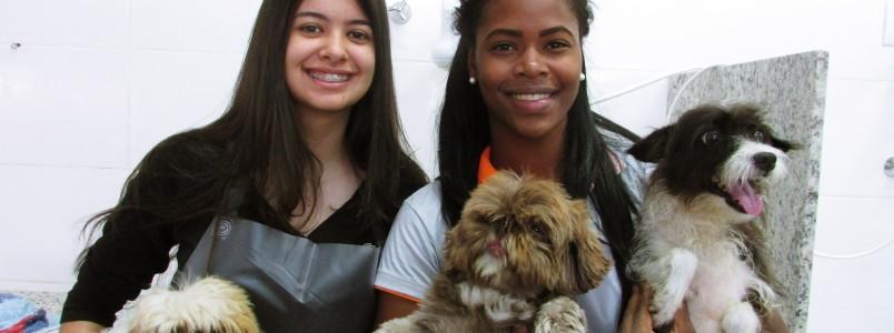 Terra Animal entra pela primeira vez no Encontro dos Apaixonados por Cães de Monlevade (MG)