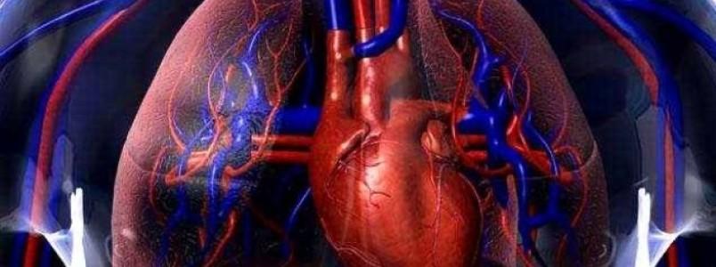 18,4 milhões têm problema de colesterol alto no Brasil