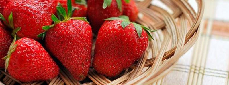 Frutas do inverno: confira quais são e seus benefícios
