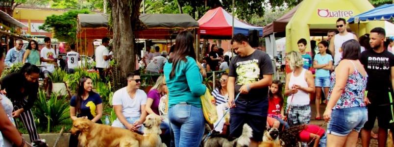 9º Encontro de Cães e Criadores acontece em Itabira, MG
