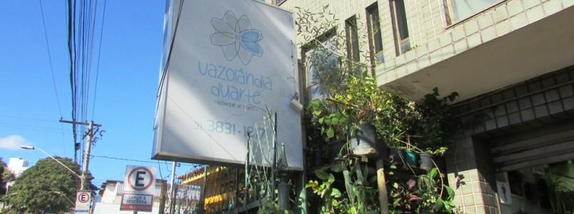 Vazolândia Duarte: Lindas flores e belíssimas decorações