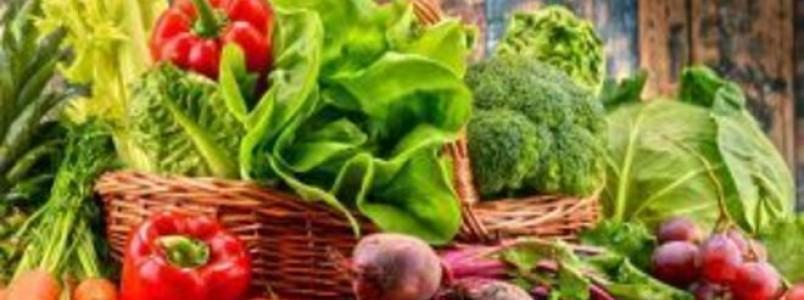 Diferenças entre legumes e verduras: confira