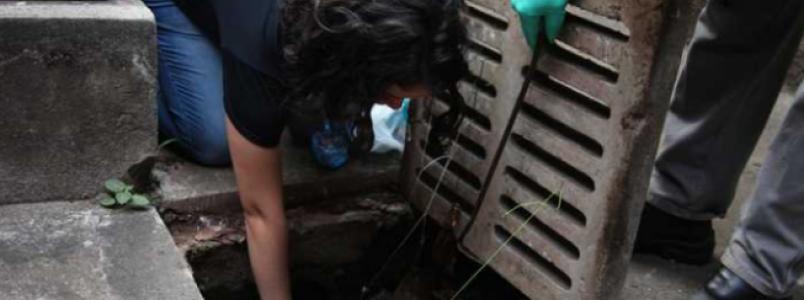 Larvicida criado na UFMG combate o mosquito da dengue mesmo em águas sujas