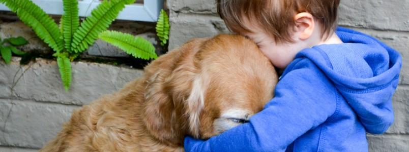 Pessoas com pets desenvolvem mais empatia e têm mais felicidade, diz estudo