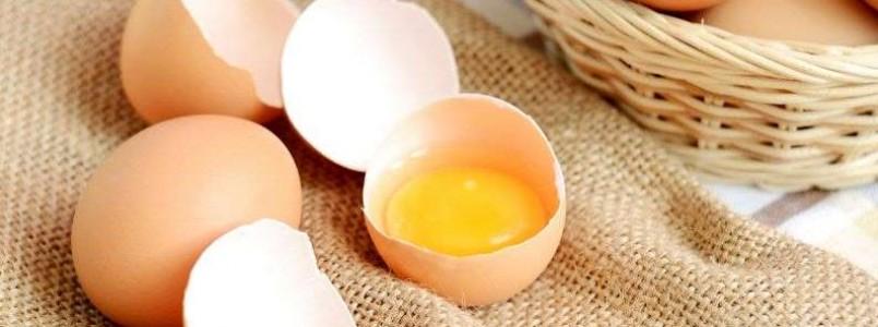Como saber se o ovo está bom: 4 truques para você nunca mais quebrar um estragado