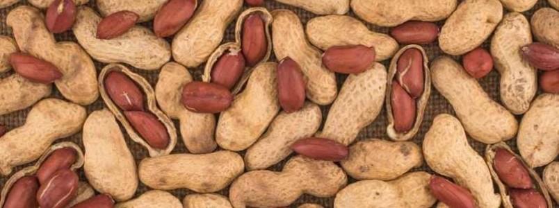 Benefícios do amendoim: descubra como ele pode contribuir com a saúde!