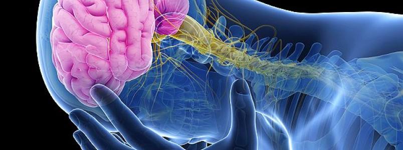 AVC x dor de cabeça: sintomas podem ser confundidos. Aprenda a identificar